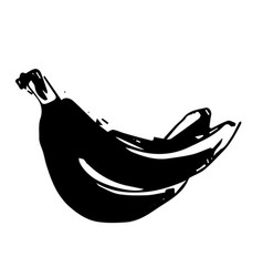 hand drawn black color sketch of banana on vector image