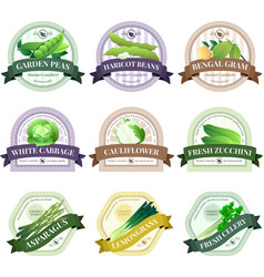 Vegetable and Herbs Flat Labels Set vector
