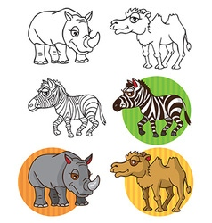 Wild animals Zebra camel rhinoceros vector