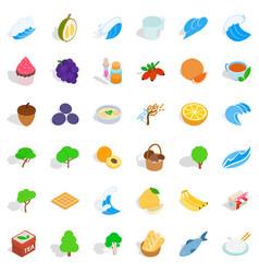 Lifelike icons set isometric style vector