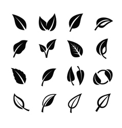 Leaf nature vector image vector image