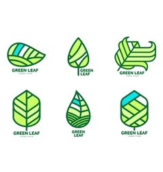 Set of green leaf logo templates vector