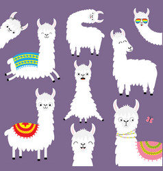 alpaca llama set childish baby collection cute vector image