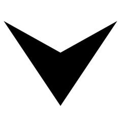 Arrowhead Down Flat Icon vector