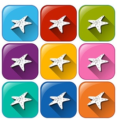 Buttons with starfishes vector