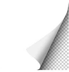 Curled corner of sheet of white paper vector