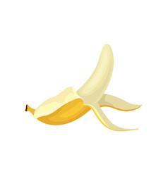 flat icon of half peeled banana bright vector image
