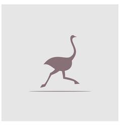 ostrich logo design silhouette creative logo bird vector image