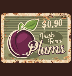 Plums rusty metal plate vintage tin sign vector
