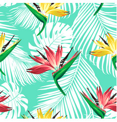 strelitzia palm pattern bir vector image