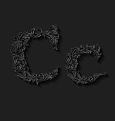 Decorated letter c vector image
