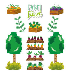 farm pixel cartoons vector image