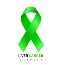liver cancer awareness month realistic emerald vector image