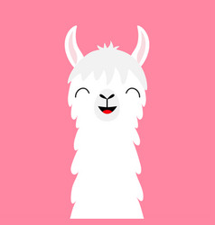 Llama alpaca animal face neck fluffy hair fur vector
