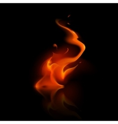 Red Fire Flame Bonfire on Background vector
