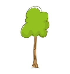 tree plant drawing isolated icon design vector image