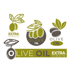 Live olive oil extra virgin flat logotypes on vector