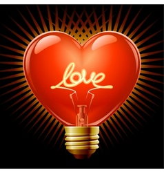heart light bulb vector image vector image