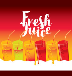 colorful set drink glasses with juice and straw vector image