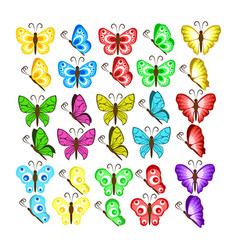 colors butterflies isolated on white background vector image