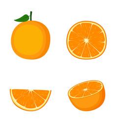 Orange whole fruit half and slice on white vector