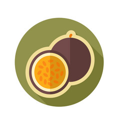 passionfruit flat icon tropical fruit vector image