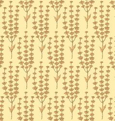 Sketch basil herb in vintage style vector image