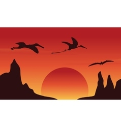 Silhouette of dinosaur pterodactyl at sunset vector image vector image