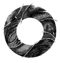 Abstract circle frame vector