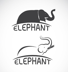 Elephant design on white background vector