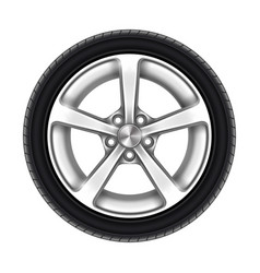 isolated car wheel tyre or tire on white vector image