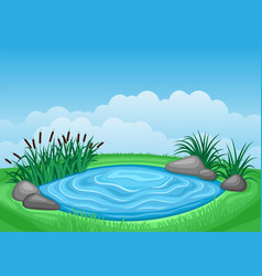 Landscape with pond and reeds vector