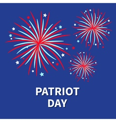 Patriot day Three Fireworks night sky vector