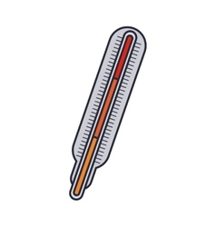 thermometer with temperature scale in colors vector image