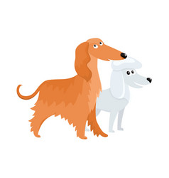 cute funny dog characters - long haired afghan vector image