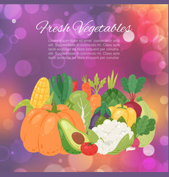 fresh farm vegetables for organic and healthy food vector image