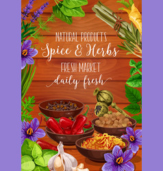 Herbs and spices grocery seasonings greens vector