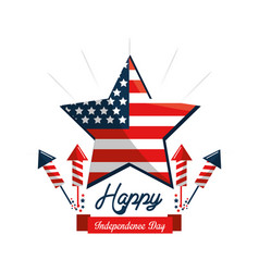 Star usa flag independence day with fireworks vector
