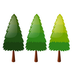 tree in three colors vector image