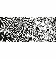 wild animal background - template with zebra and vector image