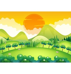 Scene with field and trees vector image