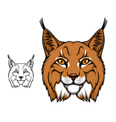 Lynx or bobcat mascot head wild cartoon animal vector
