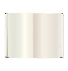 open clear note book vector image