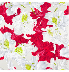 seamless texture rhododendrons red and white vector image
