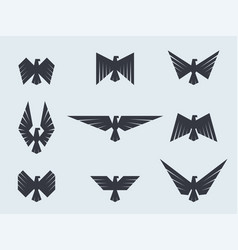 set eagles and hawks eagle logo template vector image