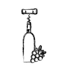 contour wine bottle with grape fruit and corkscrew vector image vector image