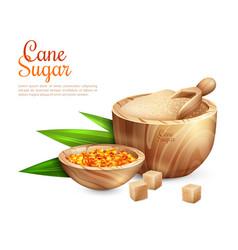 Cane sugar pail background vector
