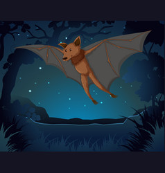 Bat flying in the dark vector