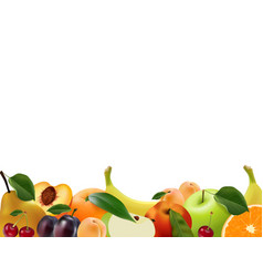 blank a lot of juicy delicious fruit vector image
