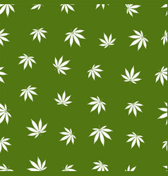 Cannabis seamless pattern marijuana leaf white vector
